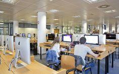 Red de ordenadores de la Sala de Mediateca. Imagen: Damián Llorens