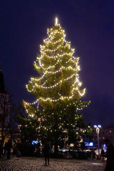 Christmas Tree, Holiday Decor, House, Home Decor, Teal Christmas Tree, Decoration Home, Home, Room Decor, Xmas Trees
