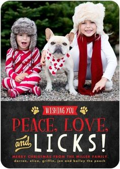 Paws for Applause - Flat Holiday Photo Cards - Hello Little One - Tomato - Red : Front Christmas Card Photo Ideas With Dog, Dog Christmas Pictures, Family Christmas Cards, Christmas Puppy, Christmas Animals, Holiday Photo Cards, Holiday Photos, Xmas Cards, Family Pictures