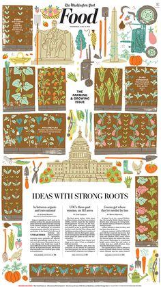 Harriet Taylor Seed | Illustrators | Central Illustration Agency