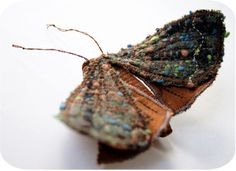 fabric moth by Laura Jacquemond