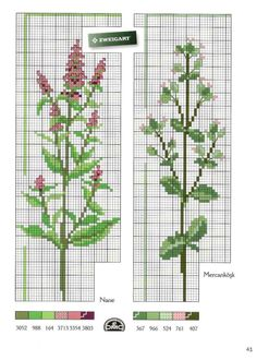 ru / Фото - Kanavice nature et fleurs Oct. Cross Stitch Fruit, Cross Stitch Kitchen, Cross Stitch Bookmarks, Just Cross Stitch, Cross Stitch Needles, Cross Stitch Flowers, Cross Stitching, Cross Stitch Embroidery, Embroidery Patterns