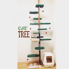 旦那さんと共同製作/賃貸/ハンドメイド/現状回復OK/賃貸でも諦めない!/賃貸DIY…などのインテリア実例 - 2015-12-14 00:01:23 | RoomClip(ルームクリップ) Stair Shelves, Cat Climber, Cat Work, Cat Cages, Animal Room, Cat Tree, Cat Furniture, Litter Box, Kittens Cutest