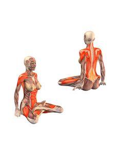 #PADMASANA Lotus pose | YOGA.com