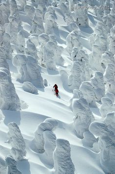 Traveling cross-country through the snow...   - photo from Mondo Neve gallery