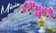 12.9 meninové priania Mária Birthday Wishes, Birthday Cake, September Birthday, Marvel, Table Decorations, Candles, Special Birthday Wishes, Birthday Cakes, Birthday Greetings