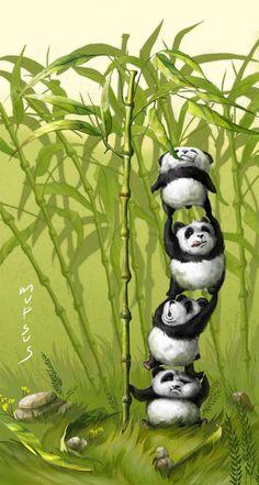Green bamboo When pandas are hungry by ~VeronikaD Panda Wallpapers, Cute Wallpapers, Animal Sketches, Animal Drawings, Cute Panda Wallpaper, Panda Bebe, Panda Nursery, Panda Painting, Panda Art