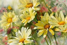 Marguerite Daisies 11 - Marnie Ward. Really soft & delicate