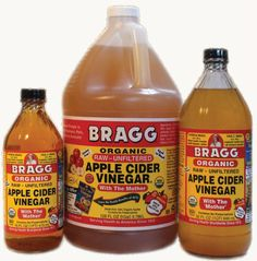 Apple Cider Vinegar for Dogs Can check with your holistic vet