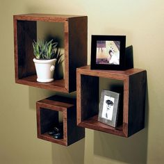 """Nexxt Cubbi Wood Cube Wall Shelf Set/3 5"""" / 7"""" / 9"""" Sq. Cairo   Kitchen Stuff Plus"""