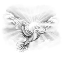 Beautiful Dove Drawings | Dove Tattoo Designs Gallery 18