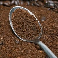 Instead of throwing away used coffee grounds, save them in a container to reuse in your garden. The dried grounds provide organic soil nutrients and can act as mulch to your vegetables. Used coffee grounds are not acidic because most of the acid remains in the coffee beverage. Composted coffee contains high levels of nitrogen and helps to...