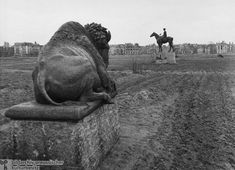 I chose this picture because of the landscape and the statues. Nude Photography, Animal Photography, Dresden, Rome, Kaiser Wilhelm, Modernisme, West Berlin, World War Two, Germany