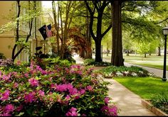 University of South Carolina, Columbia