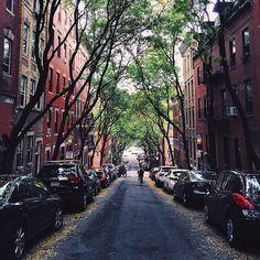 Boston / photo by Julie Ciollo