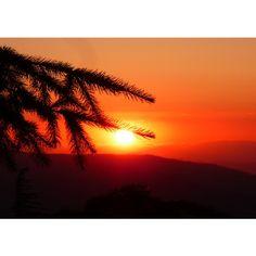 B. Mountain Sunset, orange sky, sunset decor, forest decor, fine art... ($5) ❤ liked on Polyvore featuring home, home decor, wall art, photo wall art, mountain home decor, mountain wall art, orange home decor and orange wall art