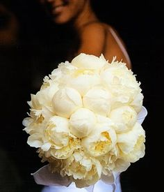 Cream Peony Bouquet- Candice, this would be pretty in purple for your wedding bouquet (if they make purple peonies)