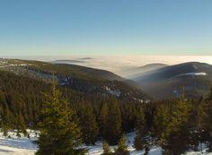 Winter Landscape Free Stock Photo - Libreshot