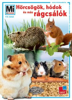 Hamster, Free Reading, Reading Online, Audio Books, Online Marketing, Animals, Kindle, Band, Rodents