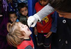 A child receives polio vaccination at an informal settlement of Syrian refugee in Zahle in the Bekaa valley October 16, 2014. Photo by Mohamed Azakir/REUTERS Two children in the Deir-Ez-Zor governorate in eastern Syria have been paralyzed by the vaccine viruses. The virus has been recovered from a third child who was not paralyzed. All signs point to vaccine viruses that are circulating in the area.