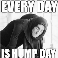 everyday is hump day meme about wednesday