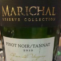 Marichal Reserve Collection Pinot Noir-Tannat 2010 - A maravilha dos opostos que se atraem! - Vinhos de Hoje