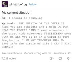Unfortunately i only know the Phantom of the Opera, beauty and the beast, Hamilton and In the Heights but I relate.