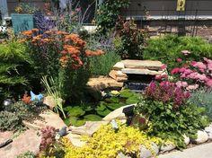 small garden pond paradise, diy, gardening, ponds water features
