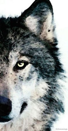 ☆ Wood Gray Timber Wolf :→: Artist Sharon Cummings ☆
