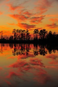 Blackwater National Wildlife Reserve, Maryland; photo by .vtgohokies