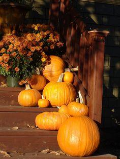 I love pumpkins.