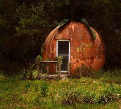 Old Florida Orange Juice Stand | by Andrea Westmoreland