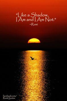 Like a shadow, I am and I am not - Rumi