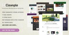 Cleanple - Fantastic multipurpose website template ajax, blog, business, color…