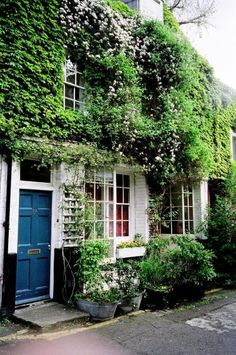 Love London home, blue door, white brick, vines thatkindofwoman:novh:(via find a pattern blue hour) Home Interior, Interior And Exterior, Wonderful Places, Beautiful Places, Outdoor Spaces, Outdoor Living, Green Facade, Cozy Cottage, Cottage Style