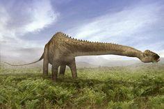 Les dinosaures comme vous ne les avez jamais vus