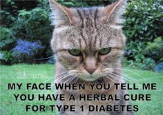 There is no cure for type 1 diabetes
