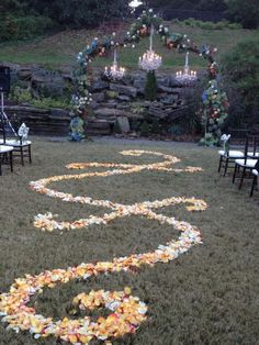 StyleBlueprint Cheekwood Outdoor Fall Wedding Petals aisle Amos Gottjpg A Fall Outdoor Wedding