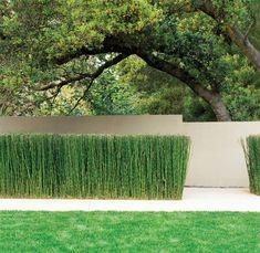 Brookvale Residence — Andrea Cochran Landscape Architecture