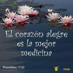 No hay mejor medicina que tener pensamientos alegres. Cuando se pierde el ánimo, todo el cuerpo se enferma. ( Proverbios 17:22) http://hopemedia.es