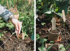 Lookbook: Gardening - Thisispaper Stories