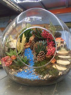 Succulent Planter Diy, Succulent Gifts, Planting Succulents, My Fairy Garden, Gnome Garden, Garden Pots, Fairy Gardens, Fairy Terrarium, Air Plant Terrarium