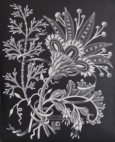 """Stylized Flower,"" scratchboard engraving"