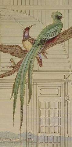 """MURAL - """"Le Frère"""" (detail) - Histoire Naturelle - Second of five new painted aviary panels for the entrance of a 1791 urban Palazzo on the Amsterdam Canals - Once the residence of Napoleons Gouverneur to the Netherlands - by Peter Korver   Amsterdam 2011"""