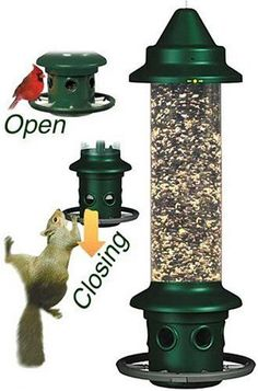 Free shipping! NEW Brome SQUIRREL BUSTER PLUS Squirrel-proof Bird Feeder #BromeBirdCare
