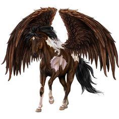 Pegasus by ~Howrseprofile
