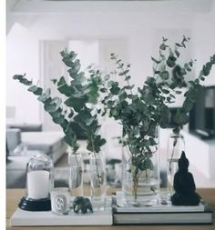 Coffee table styling with eucalyptus, glass and candles