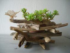 """Cachepot fai da te. A volte ci serve poco per ottenere """"tanto"""". Date un occhiata a questi 20 cachepot realizzati con legni di mare o semplici legnetti. Ecco"""