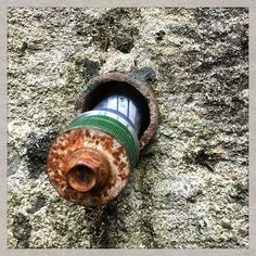 To muggles, this looks like a ordainary bolt, but when you look closer...!  Geocaching: more than meets the eye.  #IBGCp