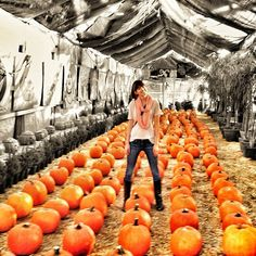 Melissa in the pumpkin patch.